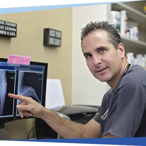 Dr. Brian Foye